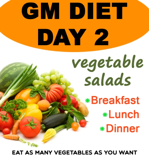 GM Diet Plan Day 2