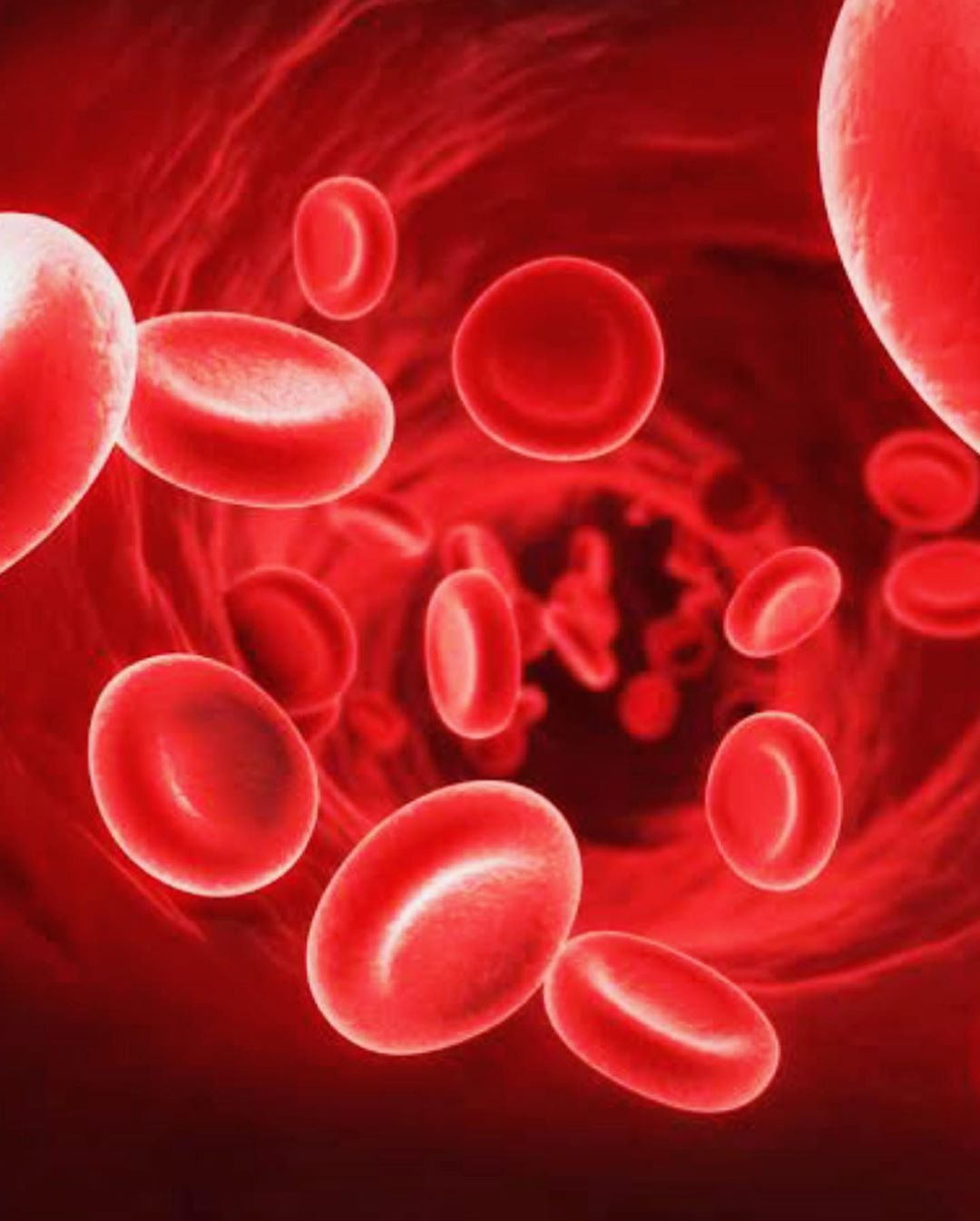 Increase Hemoglobin Count