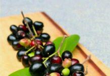 black plum benefits