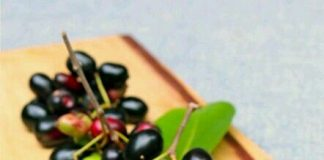black plum benefits