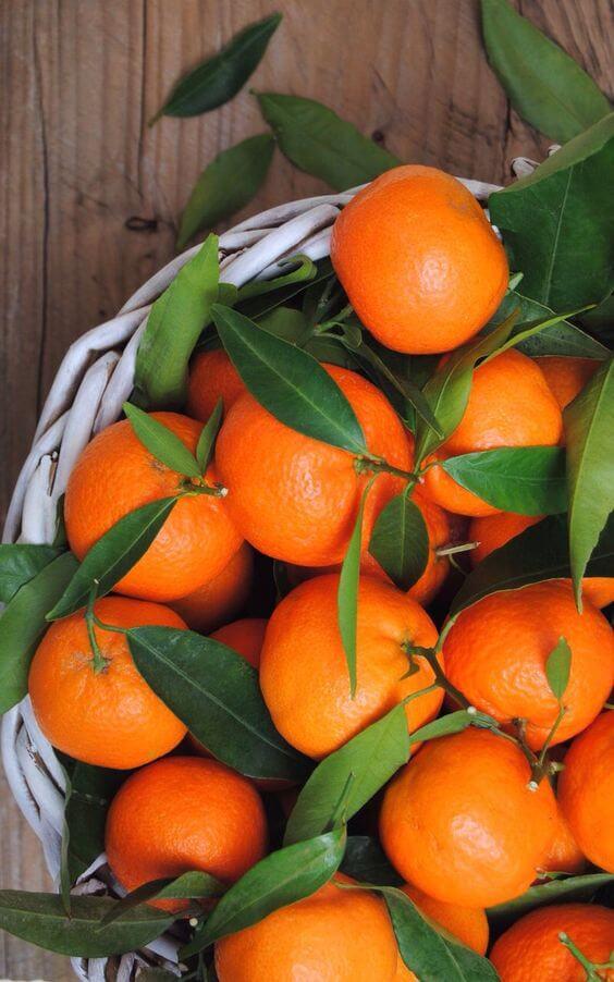 Papaya or Oranges